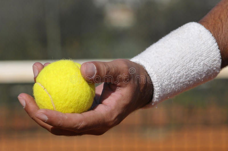 Download Tennis stock photo. Image of match, service, activity - 12020470