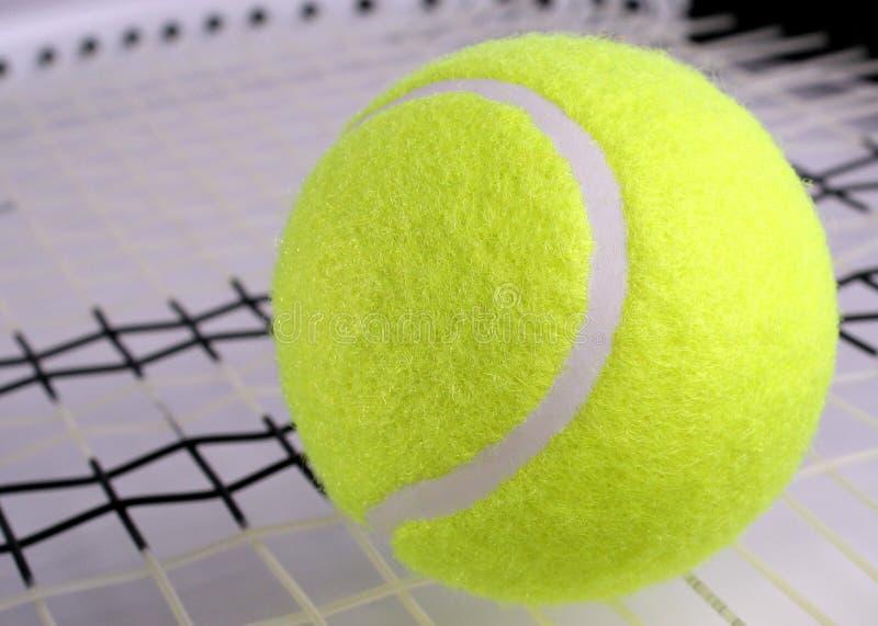 Tennis bal on racket