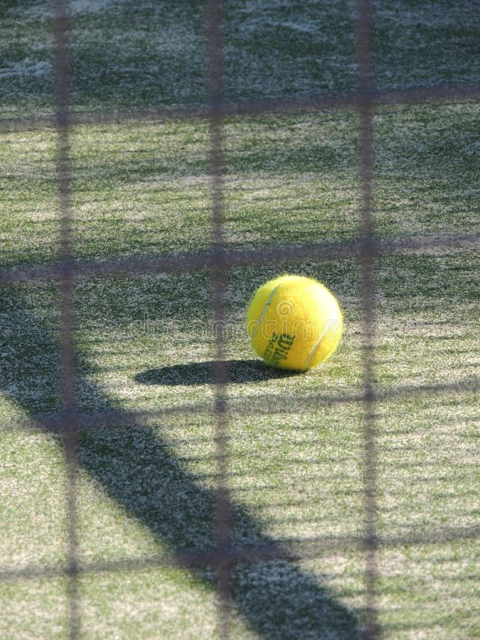 Tennis Ball In Green Grass During Daytime Free Public Domain Cc0 Image