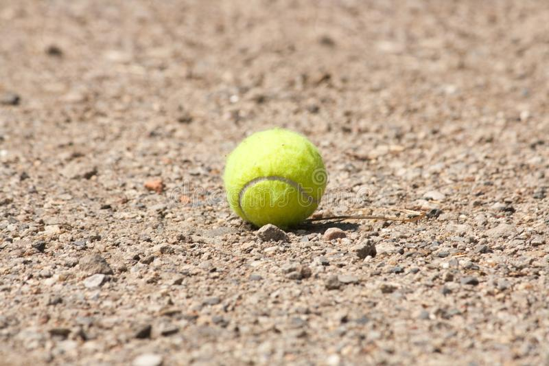 Tennis ball lying on the ground. Waiting for a fog to pick it up royalty free stock photos