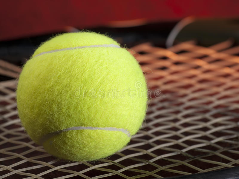 Download Tennis ball on the racquet stock image. Image of garros - 25139725