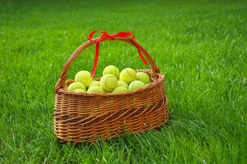 Tennis balls in a basket on green grass. royalty free stock image