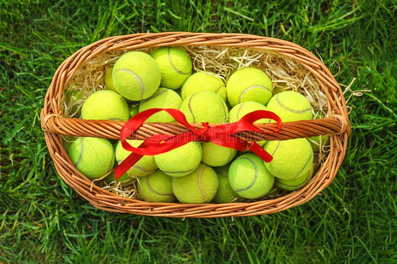 Tennis balls in a basket on green grass. stock image