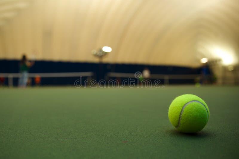 Tennis någon? royaltyfri foto