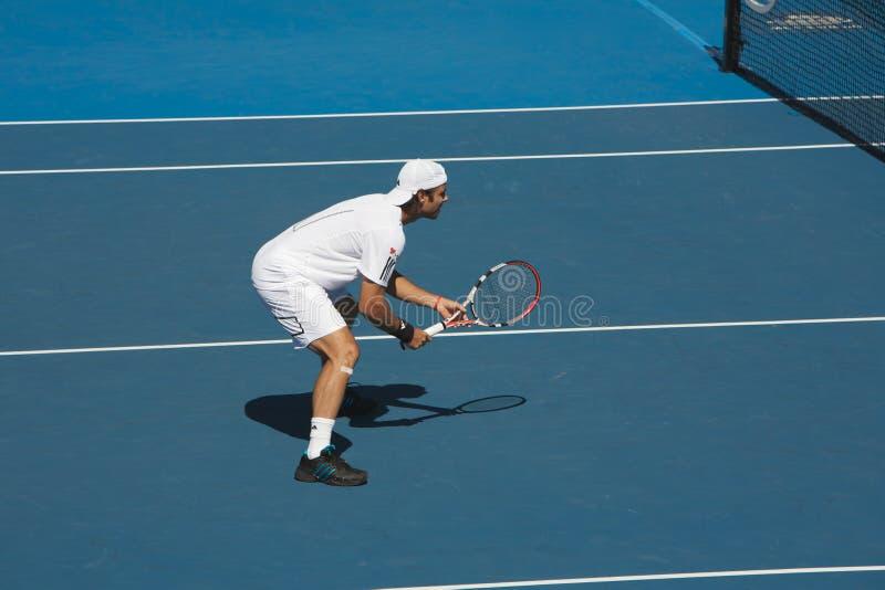Tennis ouvert d'Australien, Fernando Gonzalez   images libres de droits
