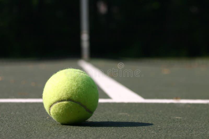 Tennisball royalty free stock photo