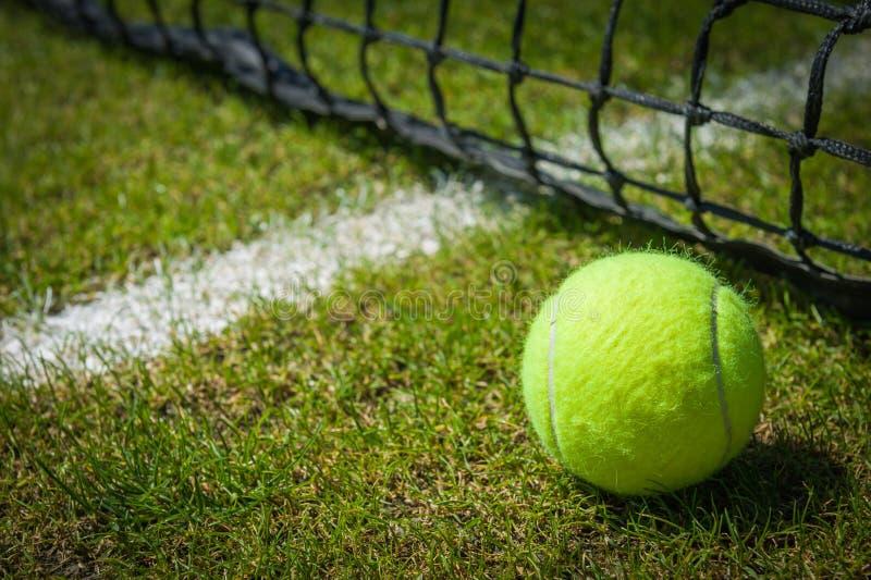 Tennisboll royaltyfria bilder