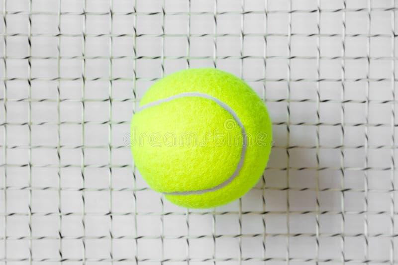 Tennisboll på racketrastret arkivbilder