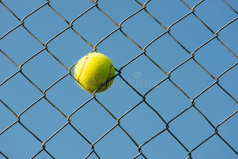 Tennisbollen klibbade i netto horisontalskott för stöldtråd royaltyfri fotografi