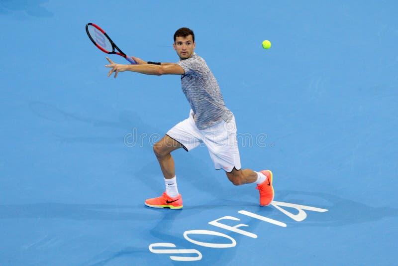 Tennisspelare Grigor Dimitrov royaltyfri bild