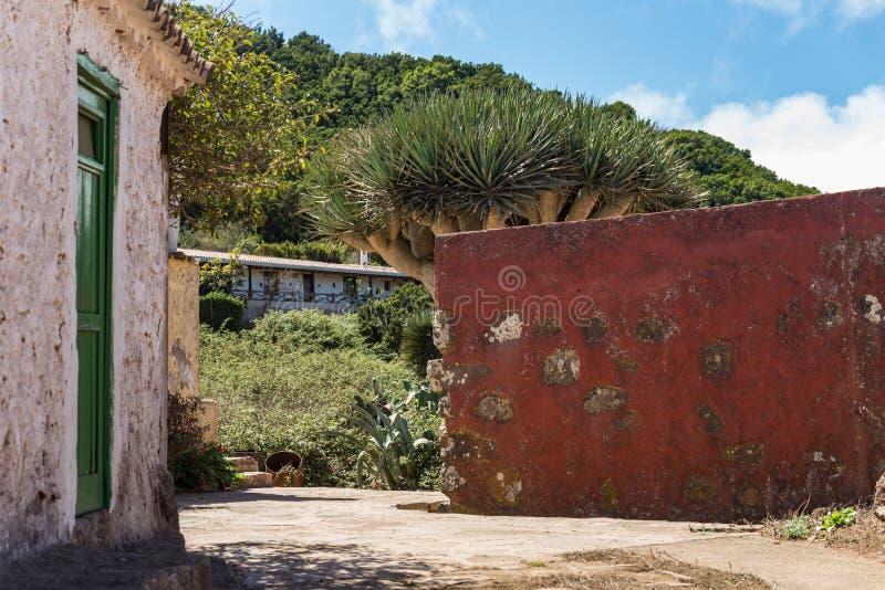 Teno Alto Mountains Village typique avec de vieilles Chambres Collines vertes couvertes de bruyère et de lauriers Cactus, agave b photo stock