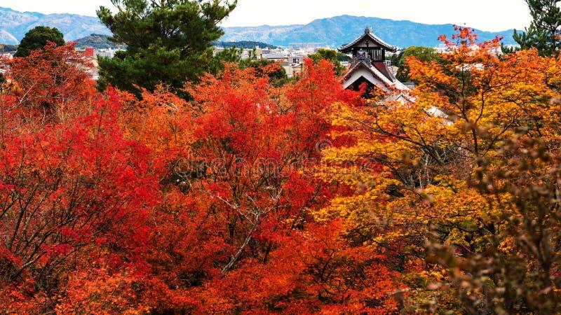 Tenryu-ji roof with autumn leaf, Arashiyama. Tenryu-ji temple roof against autumn foliage color in Arashiyama, Kyoto, Japan royalty free stock images