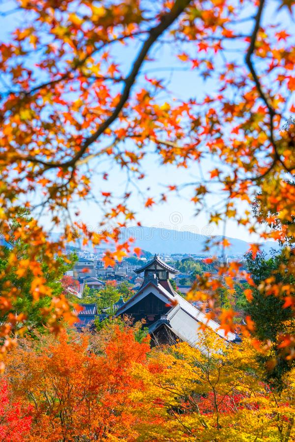 Tenryuji Temple with Autumn leaves. royalty free stock photos