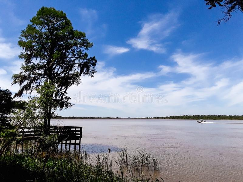 Tensaw River Delta at Blakeley State Park in Alabama. Tensaw River Delta at Blakeley State Park in Spanish Fort, Alabama royalty free stock photography