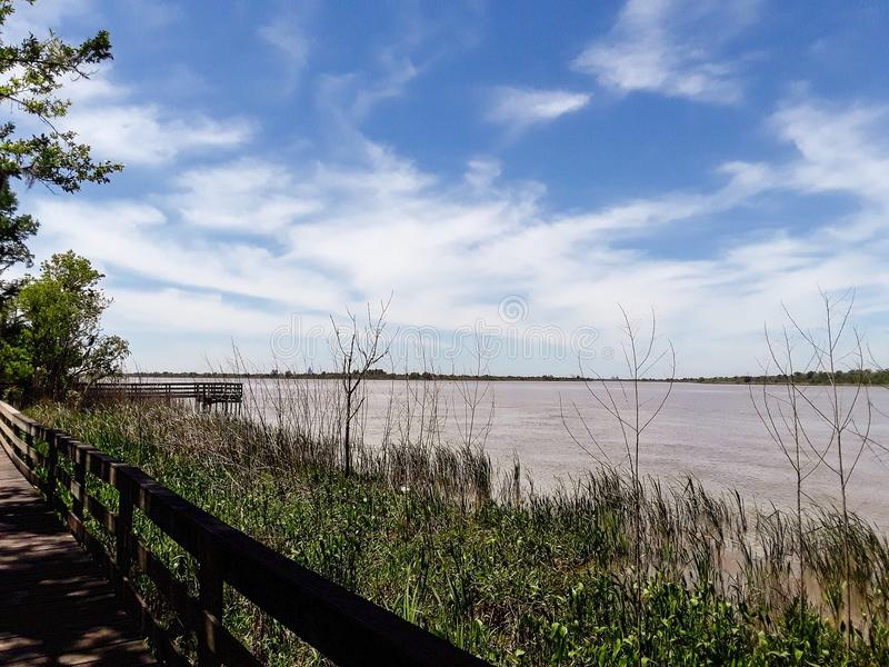 Tensaw River Delta at Blakeley State Park in Alabama. Tensaw River Delta at Blakeley State Park in Spanish Fort, Alabama royalty free stock photo