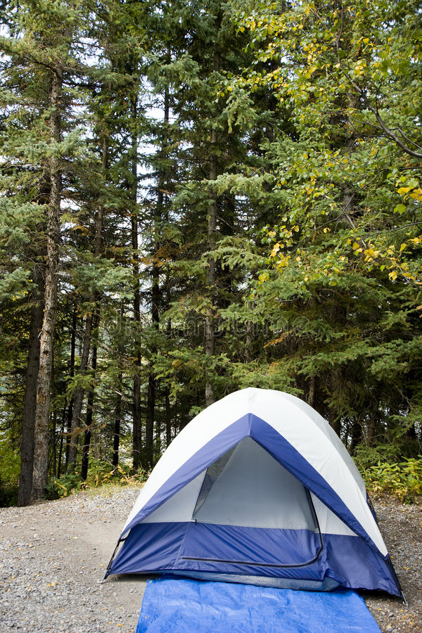 Download Tent stock photo. Image of nature, campground, environment - 6470282