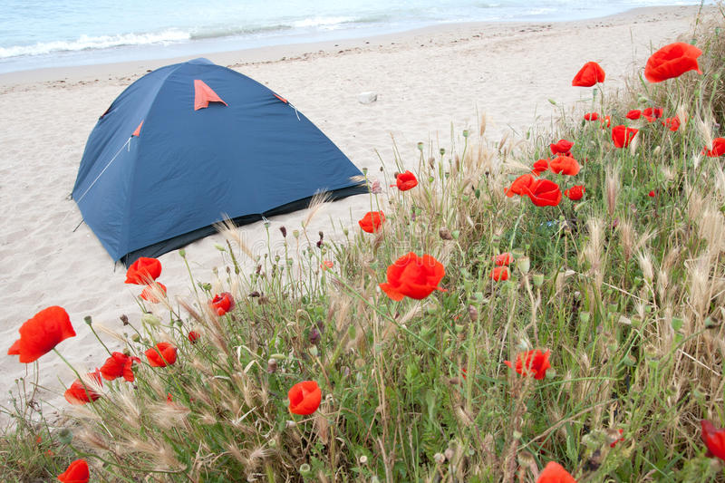 Download Tent on the beach stock photo. Image of cloud, horizontal - 19987732