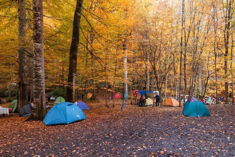 Tent Camping in Bolu stock photos