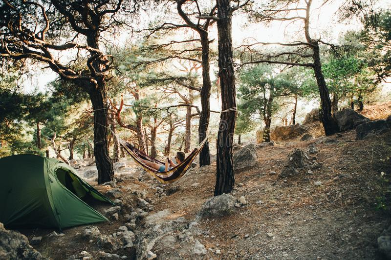 Tent parking with a hammock in a coniferous forest. royalty free stock image