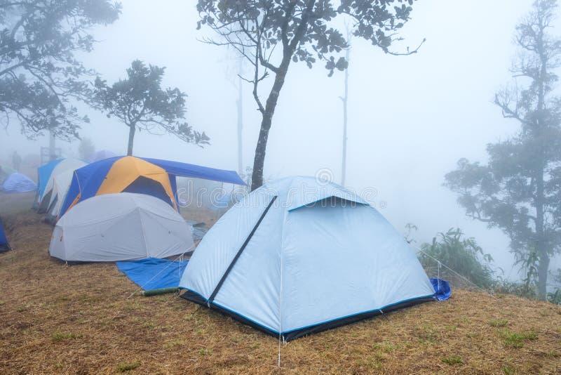 Tent die bij kampeerterrein droge weide kamperen op piekberg met mistig stock fotografie