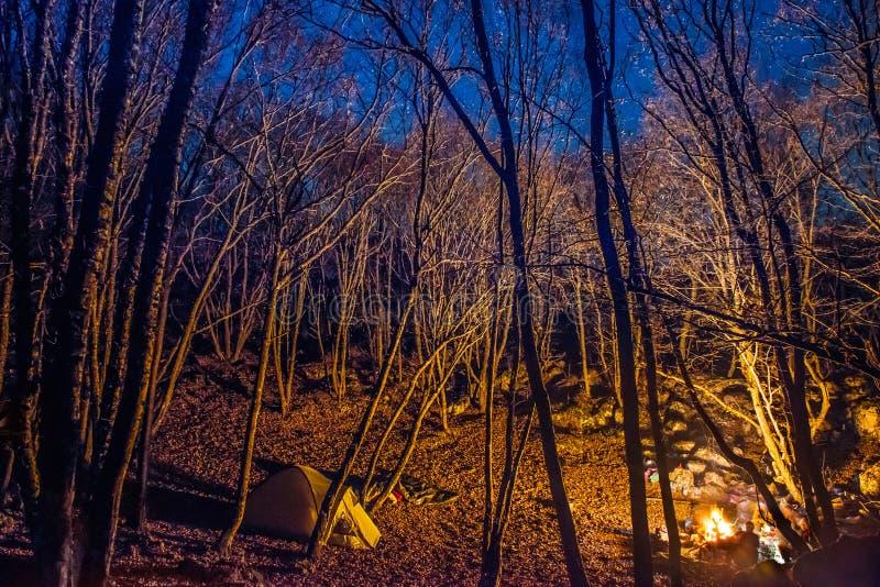 Tent die met kampvuurlicht wordt verlicht royalty-vrije stock foto's