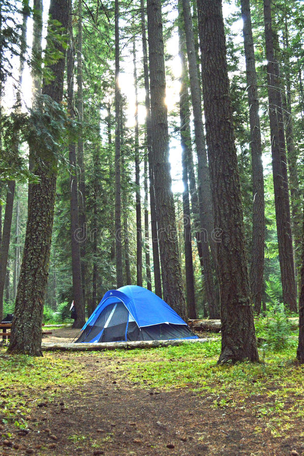 Tent die in Washington State kamperen stock fotografie