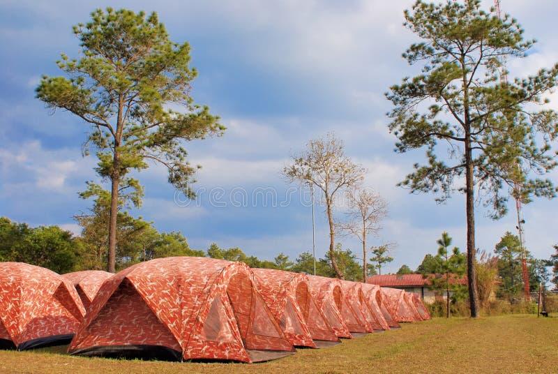 Tent in het Nationale Park van Phukradueng stock foto