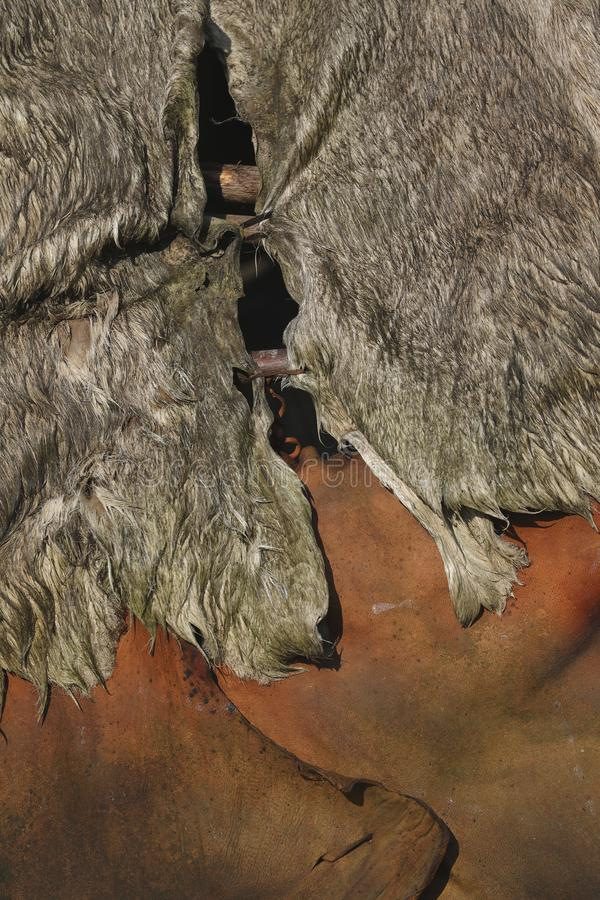 Tent made of animal hides and branches stock photos