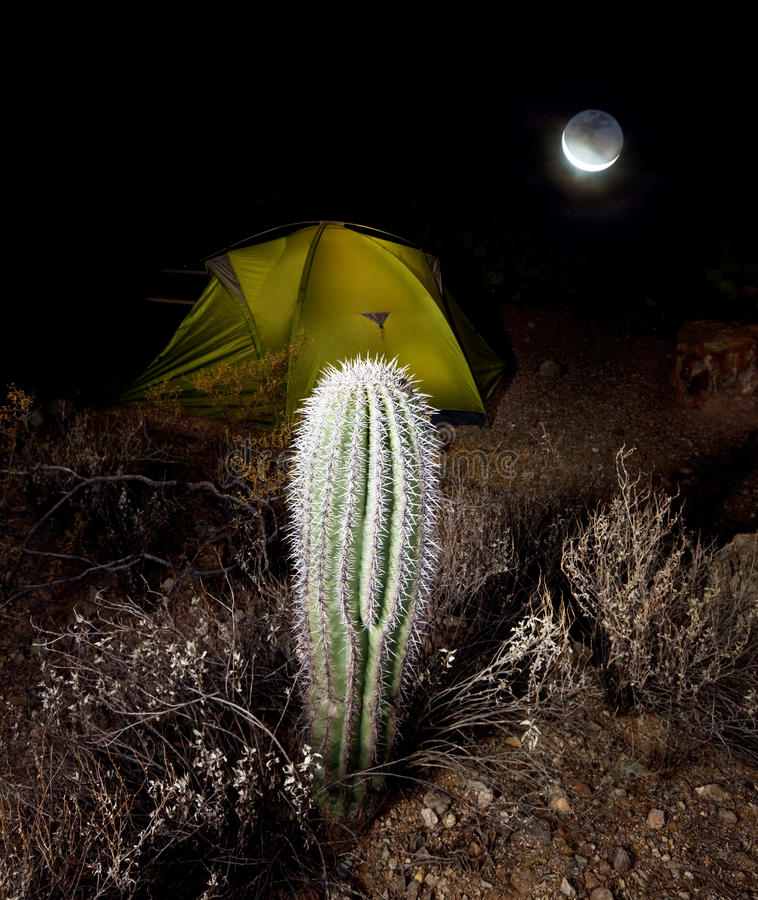 Download Tent in night stock photo. Image of light, roughing, camping - 22059958