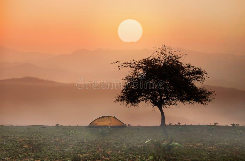 Tent op het kamperen gebied stock foto