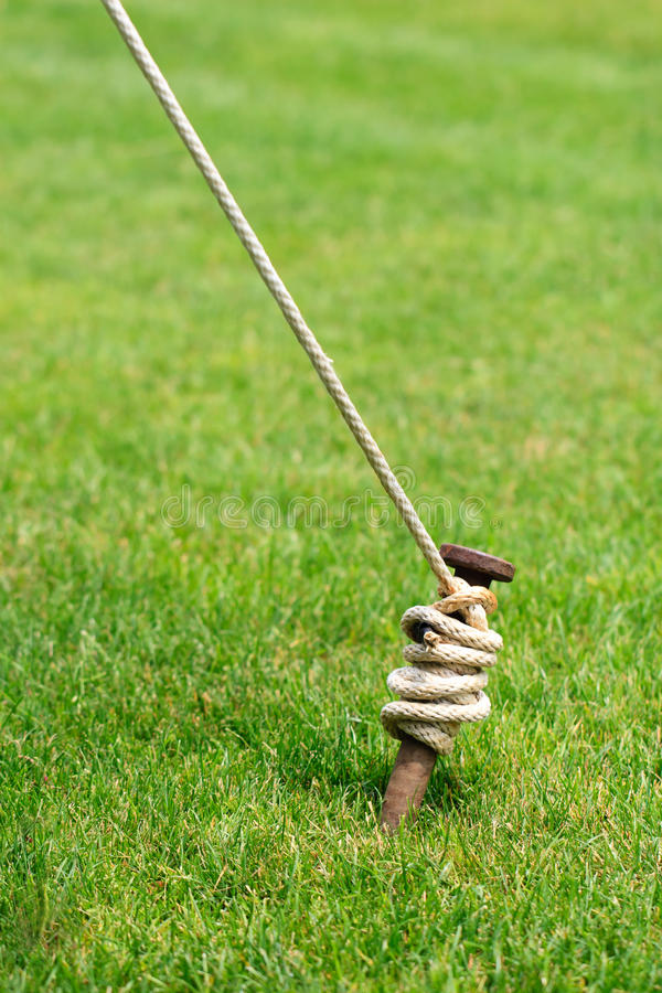 Free Tent Stake Wrapped With Rope Royalty Free Stock Photo - 25221755