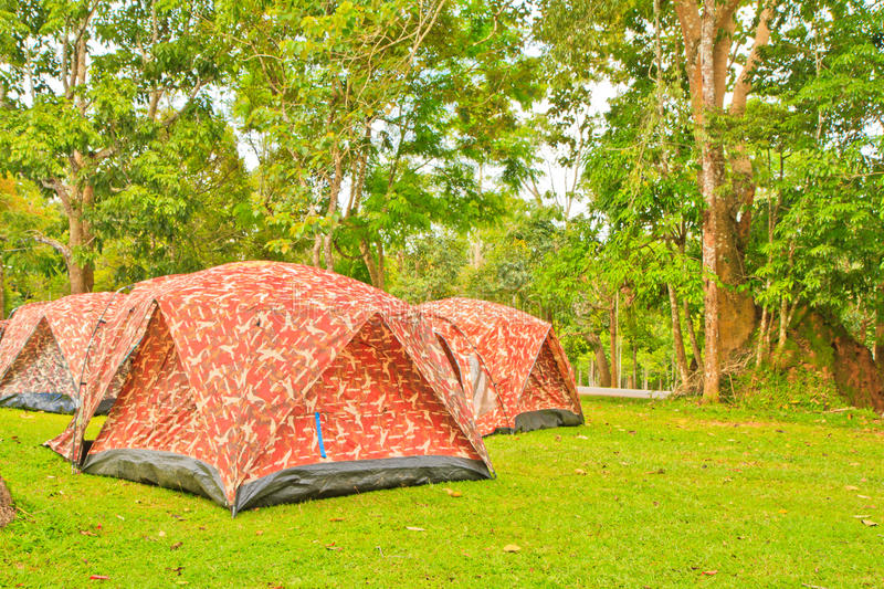 Camping Tents At Rustic Campground Stock Photo Image Of