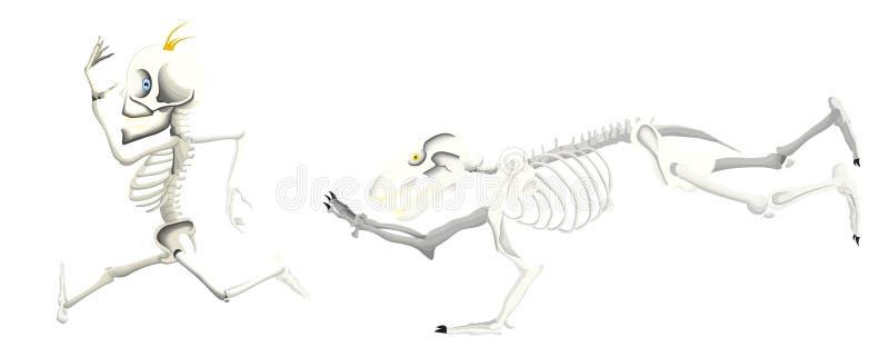 Tentativa de esqueleto do urso para travar um esqueleto do homem ilustração stock