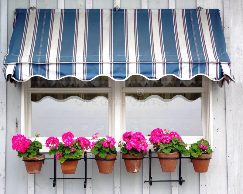 Tente avec des fleurs image libre de droits