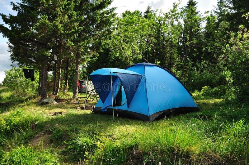 Tente bleue dans une forêt photos stock