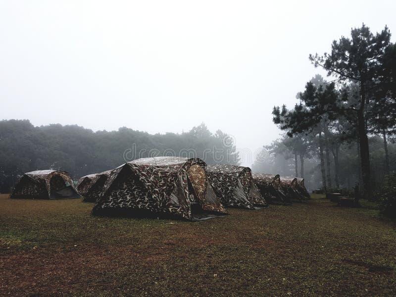 Tente dans la forêt photo stock