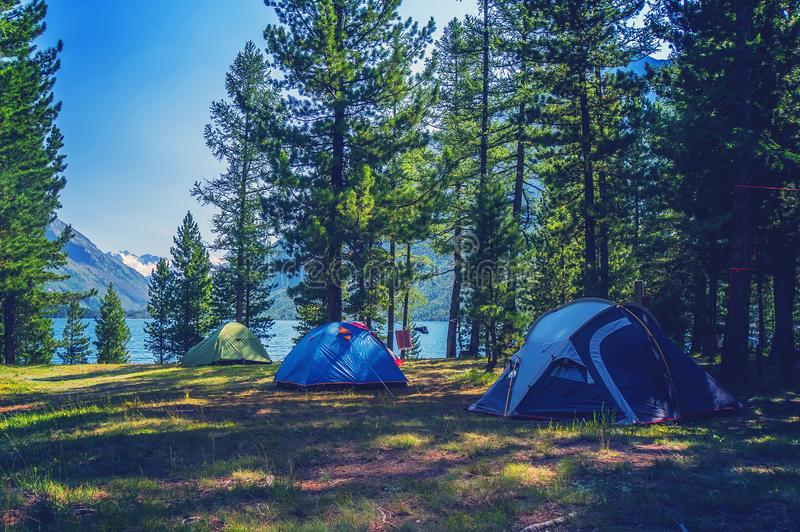 Tente de camping dans le terrain de camping au parc national photos stock