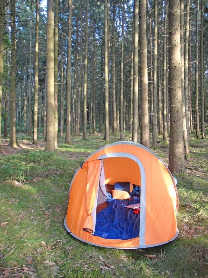 Tente de camping de deux secondes en beaux-arts de fond de forêt de haute plaine dans les produits de haute qualité d'impression photographie stock libre de droits