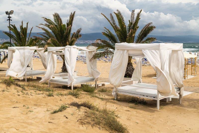 Tente et paumes de plage en été image stock