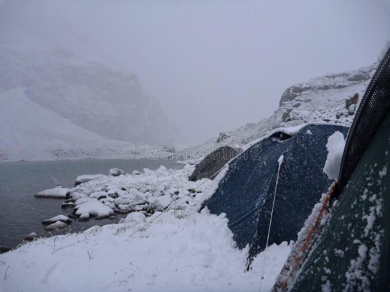 Tenten bij de meerkust in de sneeuwochtend stock fotografie
