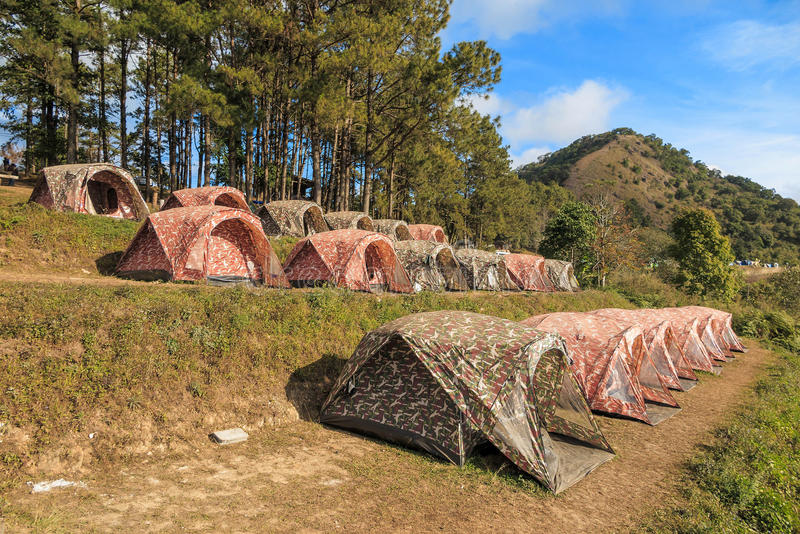 Tentes de touristes dans le camp parmi le pré photos libres de droits
