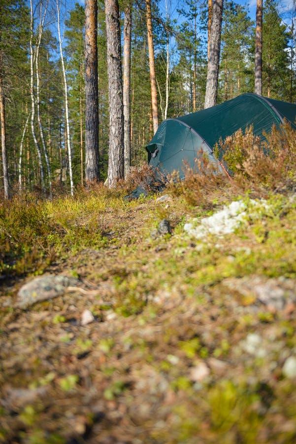 Tentkamp in het bos royalty-vrije stock afbeeldingen