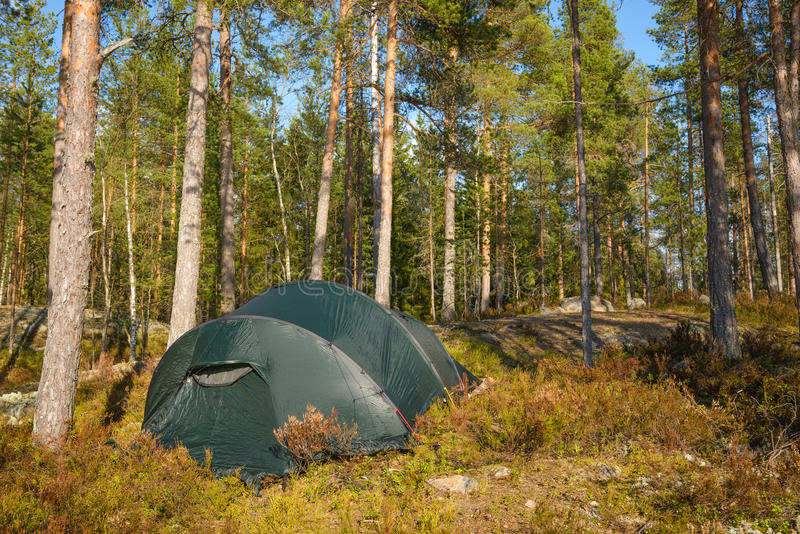Tentkamp in het bos royalty-vrije stock afbeelding