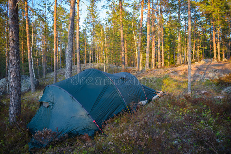 Tentkamp in het bos stock afbeeldingen