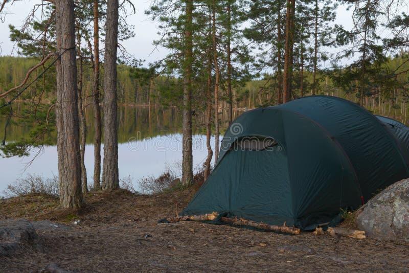 Tentkamp in het bos stock afbeelding
