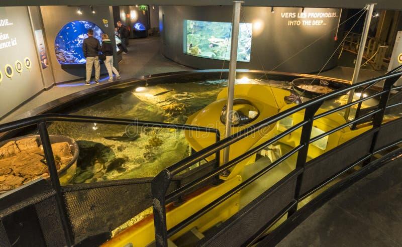 Tentoonstelling van het maritieme museum La Cite DE La Mer of Stad van het Overzees in Cherbourg, Frankrijk stock foto's
