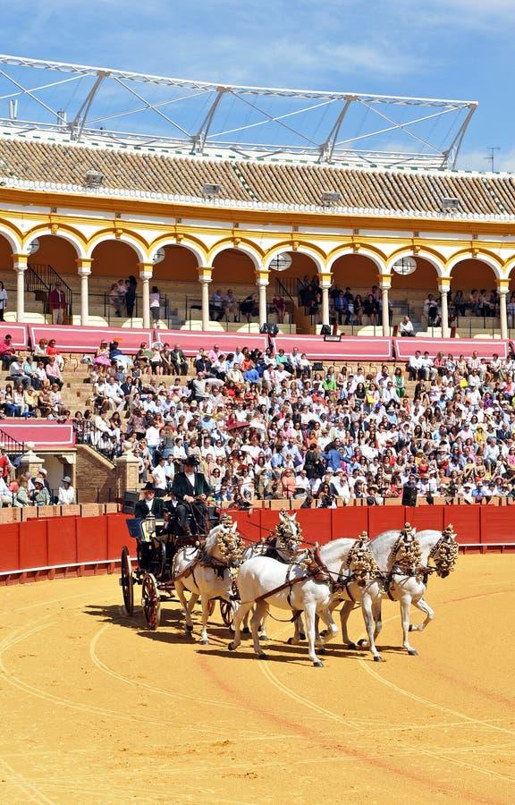 Tentoonstelling van paardvervoer, Maestranza, Sevilla, Spanje royalty-vrije stock fotografie