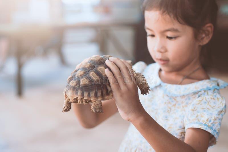 Tenuta asiatica sveglia della ragazza del bambino e giocare con la tartaruga immagine stock libera da diritti