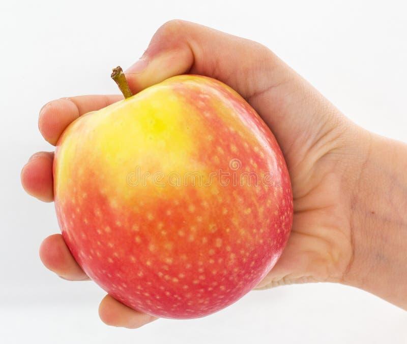 Tenuta capa una mela rossa e gialla fotografia stock