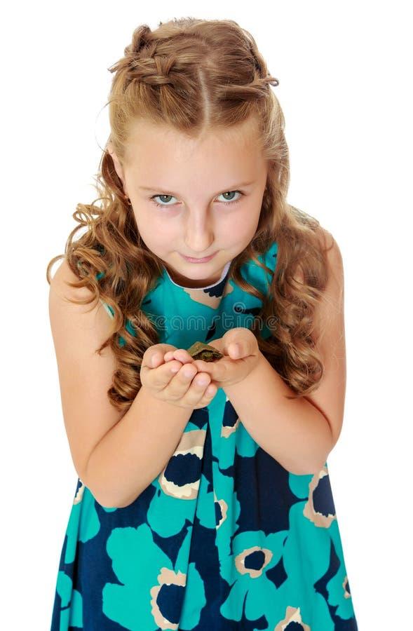 Tenuta della bambina in mani una piccola tartaruga fotografie stock libere da diritti